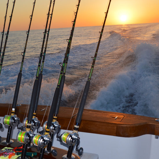 deep sea Fishing rods