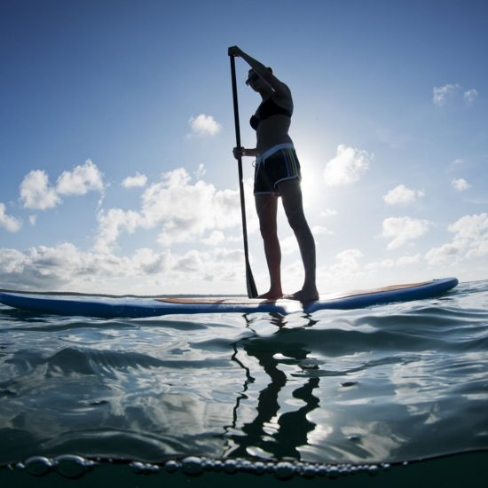 stand paddle board